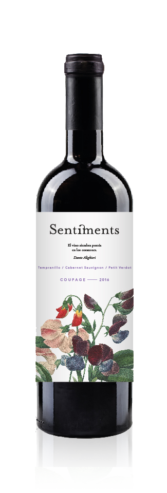 Botella Sentiments coupage 2016 - Vino de la tierra de Castilla- Minaya (albacete) - Bodegas Bonjorne