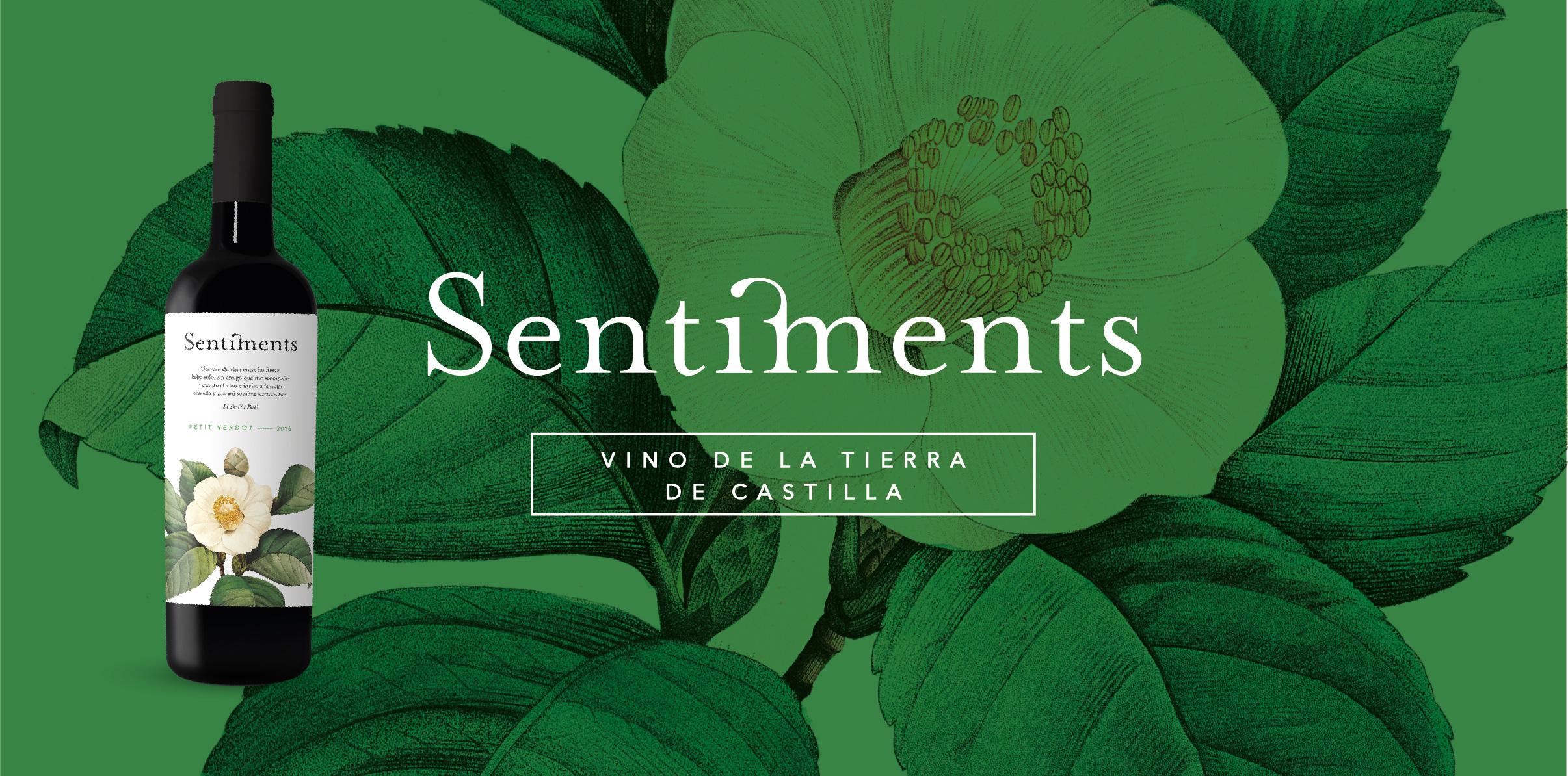 Vino de la tierra de Castilla - Sentiments Petit Verdot 2016 - Minaya (albacete) - Bodegas Bonjorne